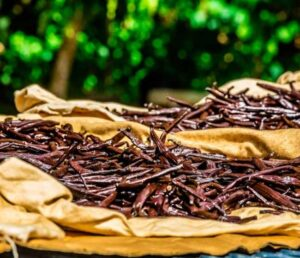 Vanilka v pytlích